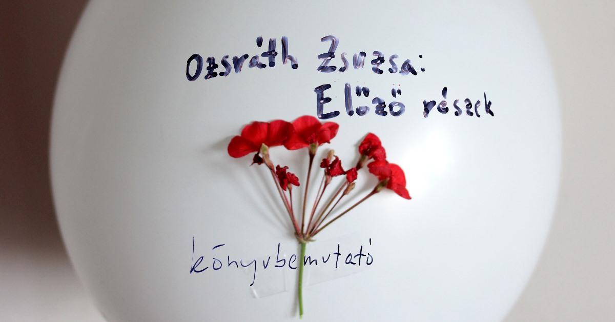 Ozsvath Zsuzsi cover foto